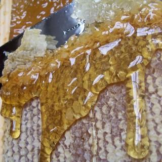 separation shoes 19846 ffacd les étapes et les outils de récolte de miel